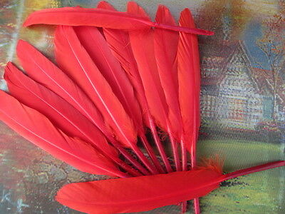 Wholesale high quality 20pcs 10-15cm/4-6inch wild Goose feather Decoration red