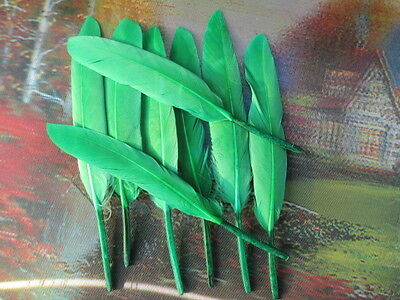 Wholesale high quality 20pcs 10-15cm/4-6inch wild Goose feather Decoration green