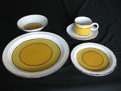 Stonehenge Midwinter Sun Stoneware Made in England 5 Piece Place Setting
