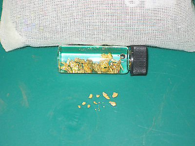 PLACER GOLD PANNING CONCENTRATES PAY DIRT / NUGGETS FLAKES FINES BULLION DREDGE