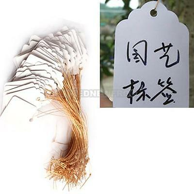 UN3F 100pcs Waterproof Strip Line Gardening Labels Signs Plant Hanging Tags Gray