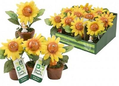 Wholesale-Resellers-12 X FUNNY FACES POLYESTER  SUNFLOWER IN POT W/GNOMES