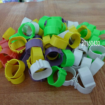22mm Chicken Leg Bands Chicken Poultry Rings 5 Colors ( 100 pcs)