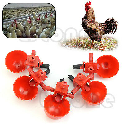 5Pcs Automatic Bird Coop Poultry Fowl Drinker Drinking Cups Chicken Water Feeder