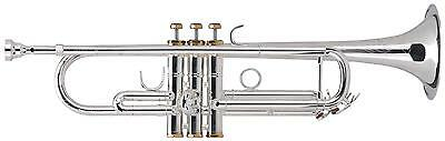 Lechgold Trumpet Bb Tuning Stainless Steel Valves Mouthpiece Silver Plated Case