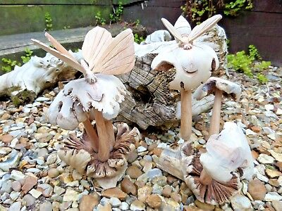 Fair Trade Hand Carved Made Wooden Wood Mushroom Bee Butterfly Parasite Statue