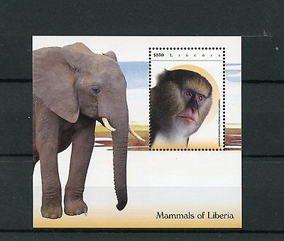 Liberia 2015 MNH Mammals of Liberia 1v S/S I Elephants Mona Monkeys