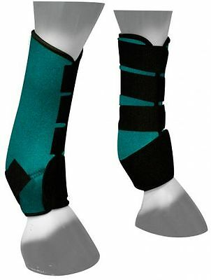 Showman TEAL Neoprene Sport Boots for Horse's Front or Hind Legs New Horse Tack