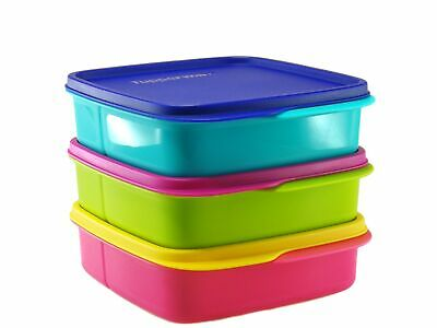 Tupperware 3X Lolly Tup Bento Divided Square Lunch Box Pink Green Blue 550ml