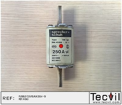 Fusible couteaux 250 A - gI Type SM 1 gL Sprecher Schuh DIN 43620 | fuse