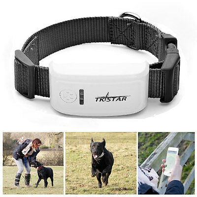New Mini Persona GPS Tracker Waterproof Tracking Location for Pet Dog Cat TK909