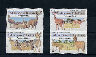 Namibia 2015 MNH Small Antelopes 4v Set Wild Animals Fauna Klipspringer Steenbok