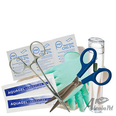 Budget Whelping Kit Forceps Thermometer Gloves Scissors Welping Puppy Kitten