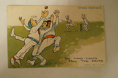 Vintage - Comic - Cricket - Postcard - Too Many Cooks Spoil The Broth.