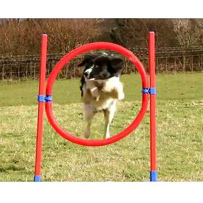 Rosewood Lightweight and Compact Dog Agility Hoop With Carry Bag
