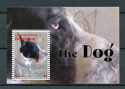 Dominica Commonwealth 2013 MNH The Dog 1v S/S Dogs Pets Great Dane Animals