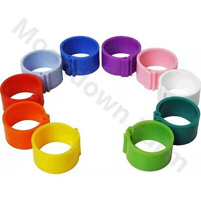 10 x POULTRY 'CLIC' Leg Rings 16mm Chicken/ Ducks/ Geese in Colour Choices
