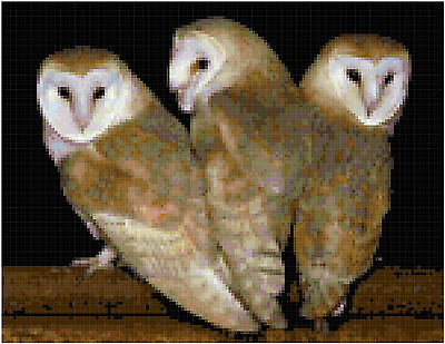 Cross Stitch Chart  Pattern 3 Owls Needlework Picture Design Craft