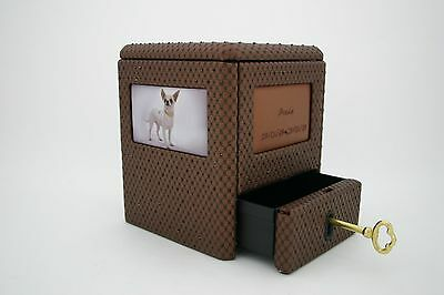 Pet urns with keepsake /swarovski crystal option
