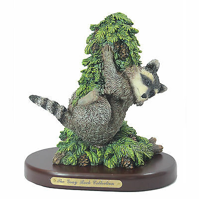 NEW The Gray Rock Collection Wild Raccoon & Fir tree Collectible Resin Figurine