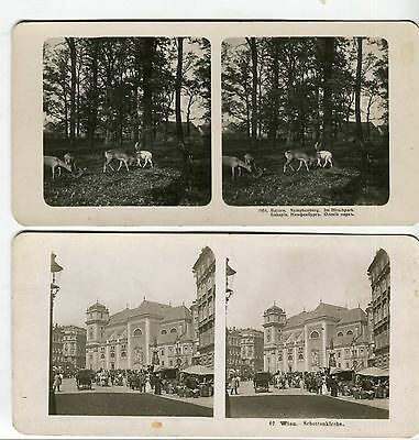 Lot of 2pcs Old Vintage Stereo Stereoview Card Vienna Bayern City pre-1917's