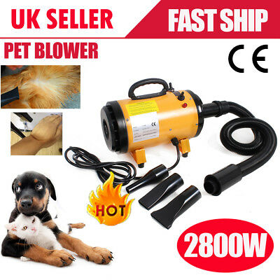 2800W Lowest Noise Pet Grooming Dog Cat Hair Dryer Hairdryer Blaster Blower UK