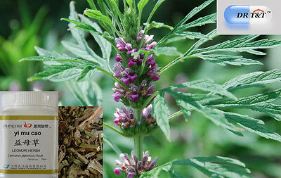 DR T&T Yi Mu Cao (Chinese Motherwort)  100g concentrated powder (1:7)