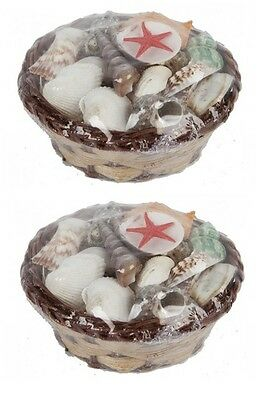 2 x Assorted Sea Shell Collection In Mini Wicker Basket Bathroom Accessory 11cm