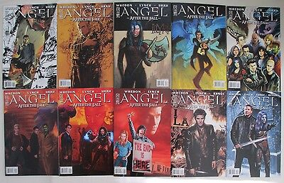 ANGEL: AFTER THE FALL (10 Issue Lot)-  #1, 2, 3, 4, 5, 6, 7, 8, 9, and 10