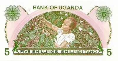UGANDA 1982 ND 5 SHILLINGS  BANK  NOTE in a Protective Sleeve