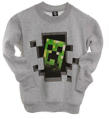 Minecraft Sweater | Mine Craft Jumper | Official | CREEPER INSIDE Age 5-6 | GREY