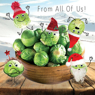 Bowl of Sprouts Christmas Card 'From All Of Us' 3D Goggly Moving Eyes, Xmas Card