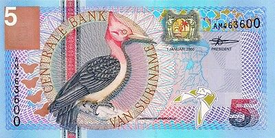 SURINAME 2000 5 GULDEN BANK NOTE in a Protective Sleeve