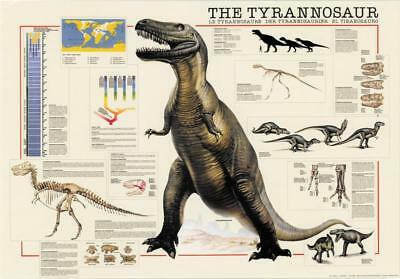 Dinosaurs Tyrannosaurus Poster 97 x 68cm Wall Decor Home Bedroom LivingRoom