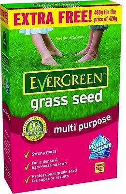 EverGreen Multi Purpose Grass Lawn Seed With Ryegrass 16m2 Coverage 480g