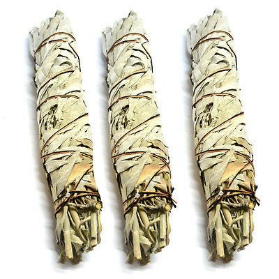 "Cleansing 8"" Fresh Native American California A Grade White Sage Smudge Stick"