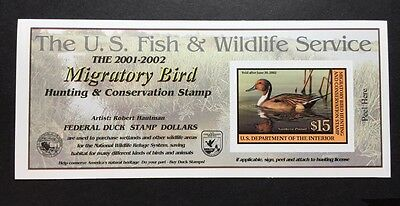 #RW68A 2001 - 2002 - US Federal Duck Stamp - Post Office FRESH