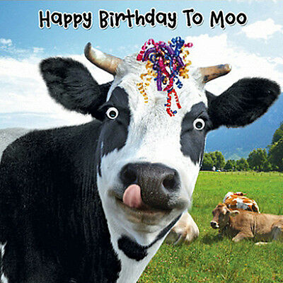 Funny Cow & Streamers Birthday Card Happy Birthday To Moo 3D Goggly Moving Eyes