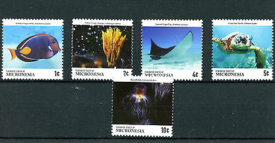 Micronesia 2015 MNH Fauna Definitives 5v Set Fish Turtle Jellyfish Sponge Ray