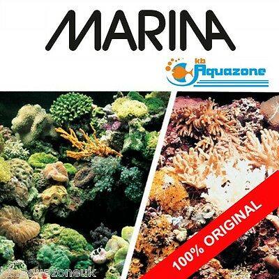 MARINA * Double Sided Background 45 cm HIGH* 2 3 4 5 6 ft  * Marine Reef/Coral