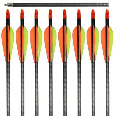 """12 NEW IRQ Archery Carbon Arrows 31"""" SP 400 Hunting Target Compound Recurve Bow"""