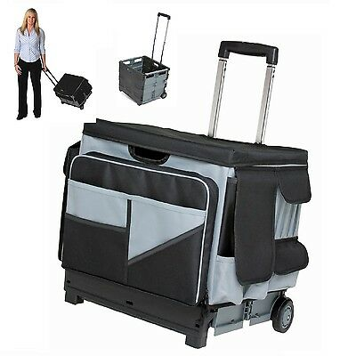 Teacher Cart Rolling Organizer Bag Scrapbooking Storage Folds Telescoping Handle