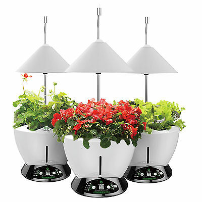 hydrokultur pflanzen grow set indoor garten anbau pflanzenlampe kr uter blumen eur 259 00. Black Bedroom Furniture Sets. Home Design Ideas