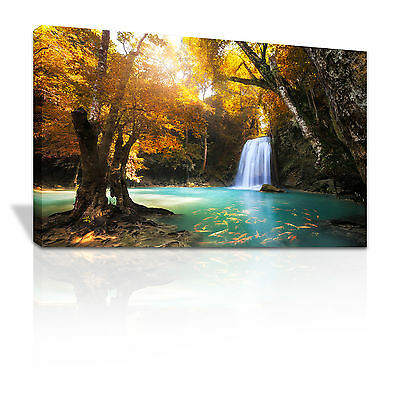 Lush waterfall into pool of Golden Carp framed canvas print xmas gift - C084