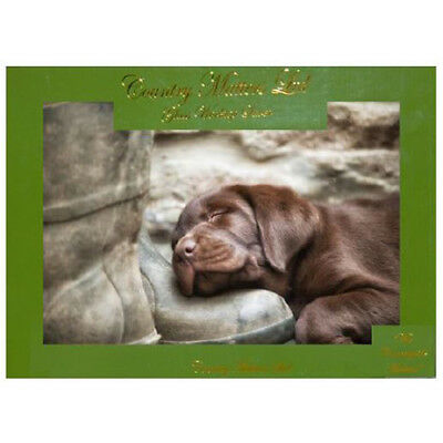 Country Matters Pup On Boot Glass Work Top Saver