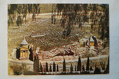 Jerusalem - Valley of Cedron - Vintage - Postcard.