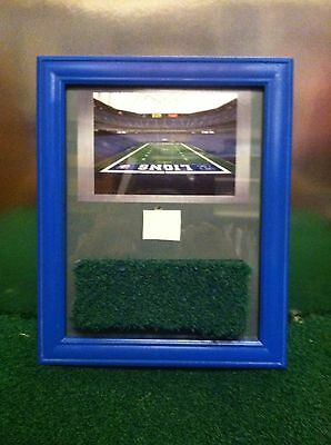NFL Detroit Lions Silverdome Game Used Turf & Roof Blue 8x10 Frame