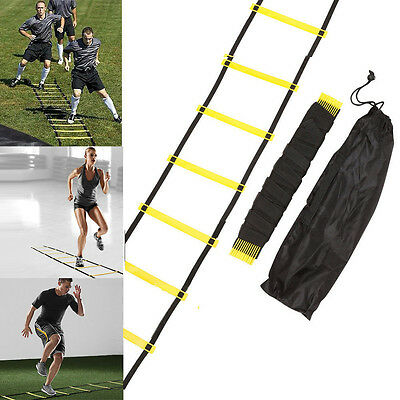 Agility Speed Sport Training Ladder 10FT 3m Soccer Fitness Boxing 5 Rung w/ Bag