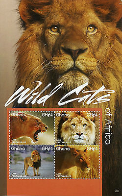 Ghana 2015 MNH Wild Cats of Africa 4v M/S II Wild Animals Fauna Lions