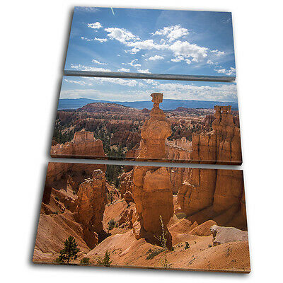Grand Canyon Aerial Landscapes TREBLE CANVAS WALL ART Picture Print